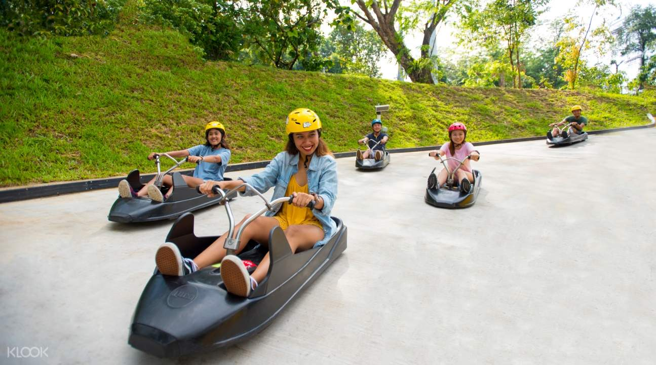 people riding the luge down Skyline Luge